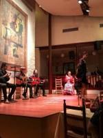 flamenco barcelona en vivo y directo el tablao de carmen que se cuece en bcn (20)