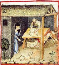 Tacuinum Sanitatis imagen queso en la Edad Media
