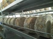 quesos azules de la quesería artesanal El Cabriteru madurando en cava en Arenas de Cabrales