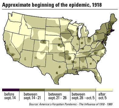 The Spanish Flu pandemic and WWI: Process