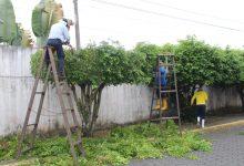 Se realiza limpieza al ingreso de la Ciudadela Municipal y en la Policía Nacional