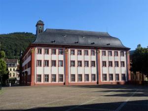 La vieille Université de Heidelberg
