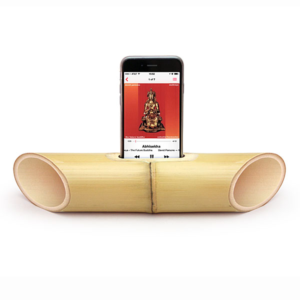 picture of a bamboo speaker