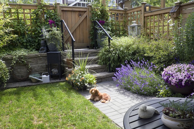 4 Landscaping Ideas for a Small Backyard - Quicken Loans Zing Blog