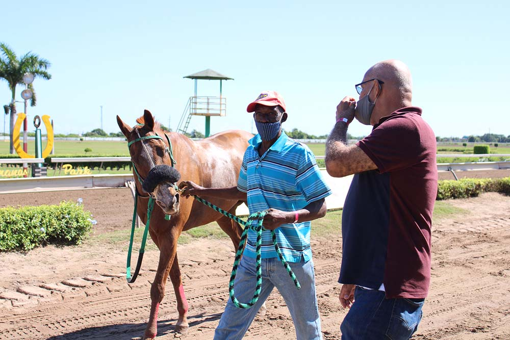 Trainer Richard Todd (right) having a word with groom Granville Singh as the latter leads home Indi Arazi. (Photo: Kimberly Bartlett)