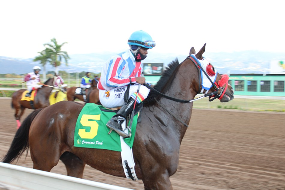 Jockey Dane Nelson on his third winner today (Jan 23). (Photo: Kimberly Bartett