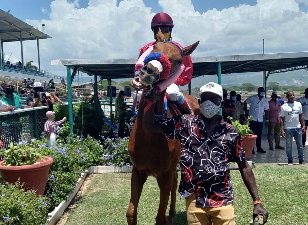 A frisky Iamacitizen in the winners' area with Dane Nelson aboard.
