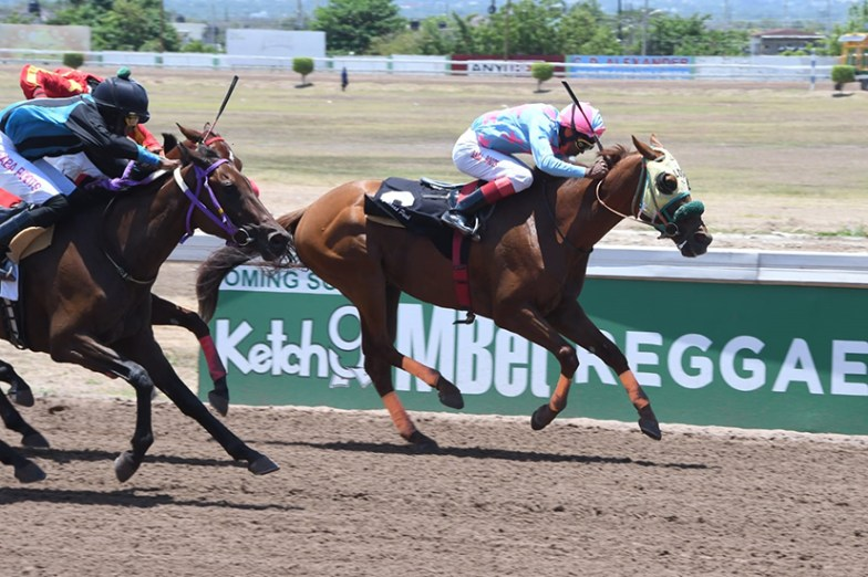 Allan hanging tough with Anthony Thomas aboard to win the Caymanas Saturday (May 29) second.