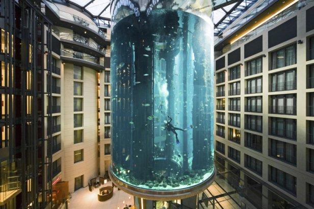 Diving in... inside