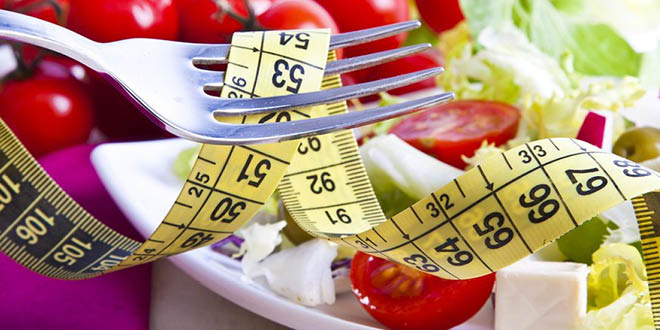QuickLoss Diet and Diary