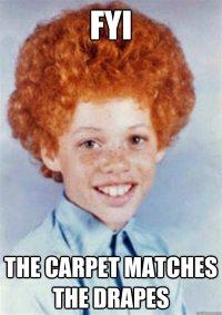 does the carpet match the drapes meme does the carpet ...