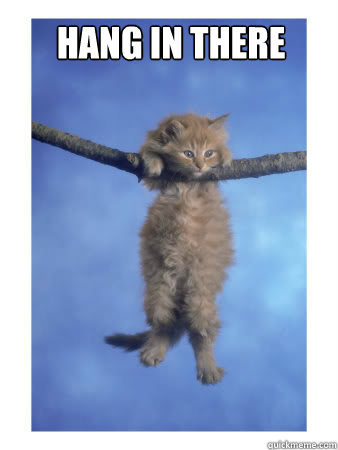 Hang in there Hang In There Kitty quickmeme