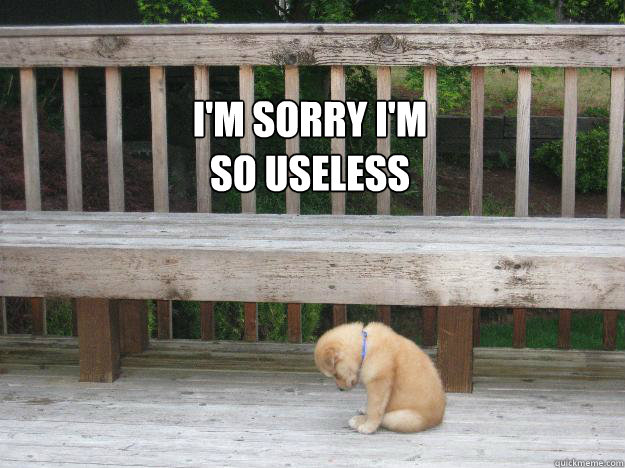 I'm sorry I'm so useless - Sorry - quickmeme