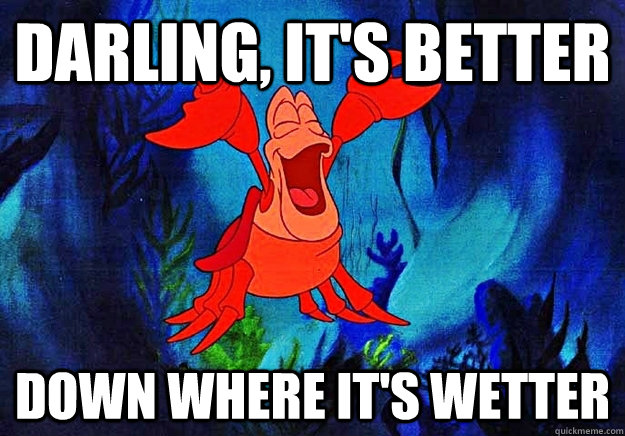 Image result for wetter is better little mermaid