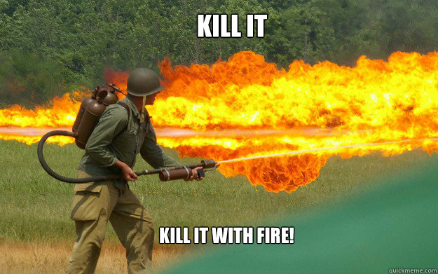 Image result for kill it with fire meme