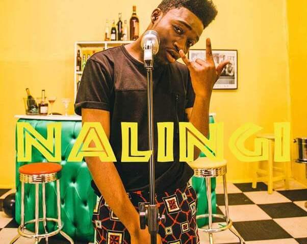 Manu WorldStar, Nalingi music video