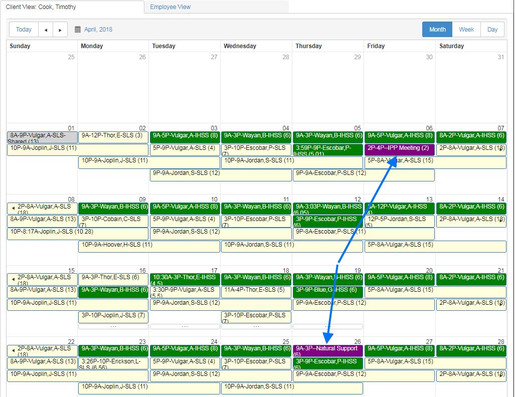 how to schedule client IPP or ISP meetings in QSP