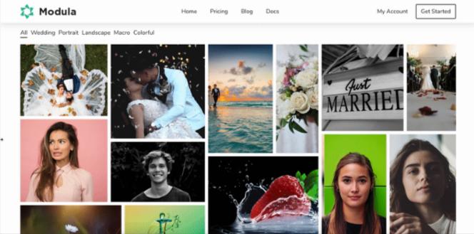 Modula Image Gallery Plugin