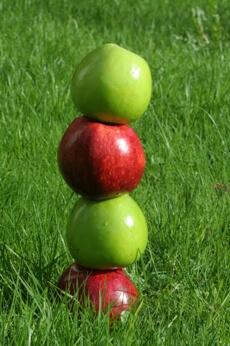 דיאטת תפוחים
