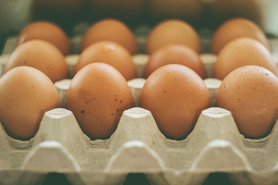 להוריד עד 10 קילו בשבועיים - דיאטת חלבונים קיצונית