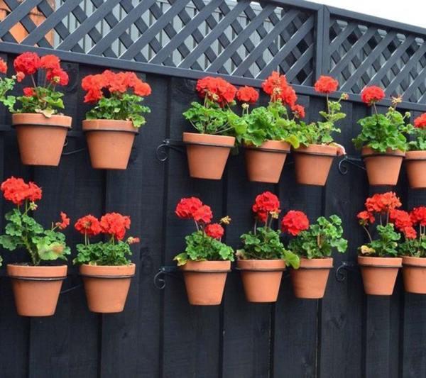 container gardening ideas - quiet