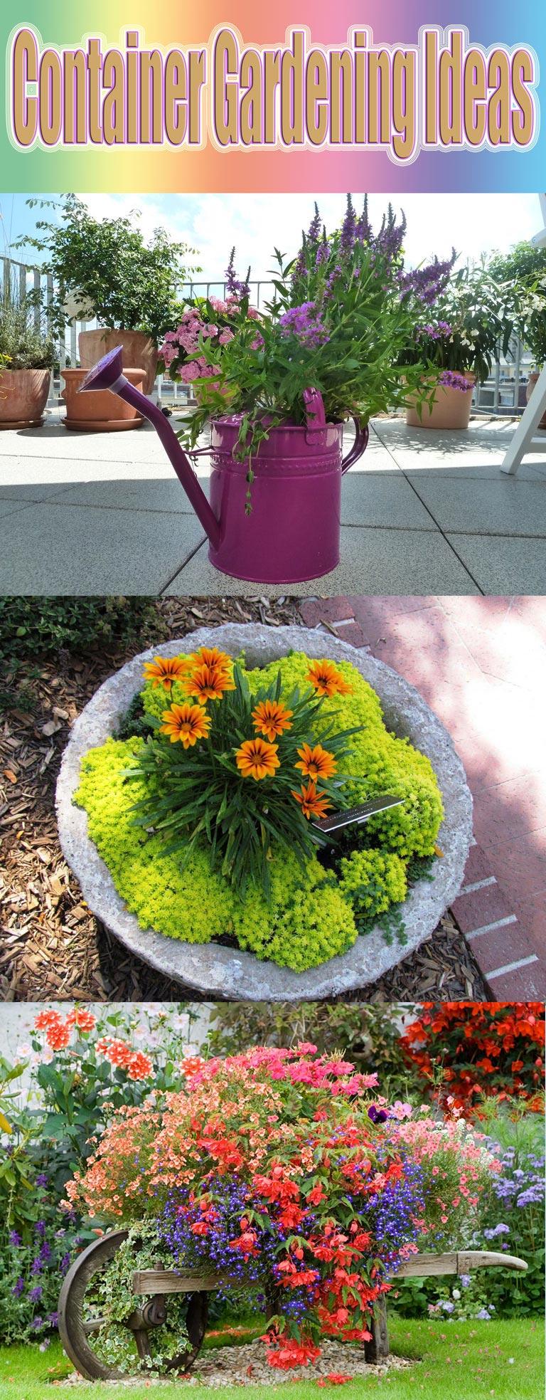 Container Gardening Ideas Quiet CornerContainer Gardening Ideas