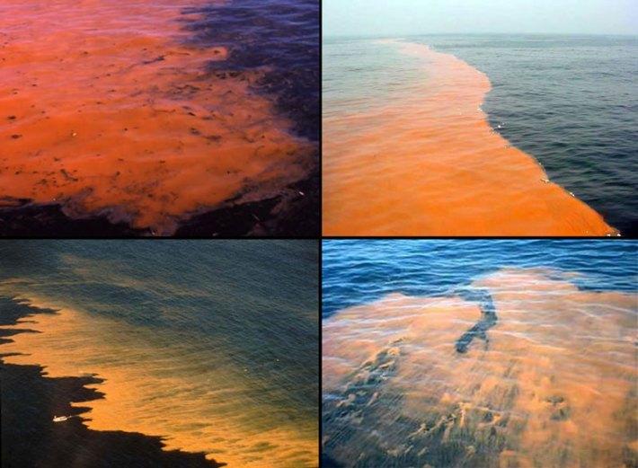 extraordinary natural phenomena Red tide