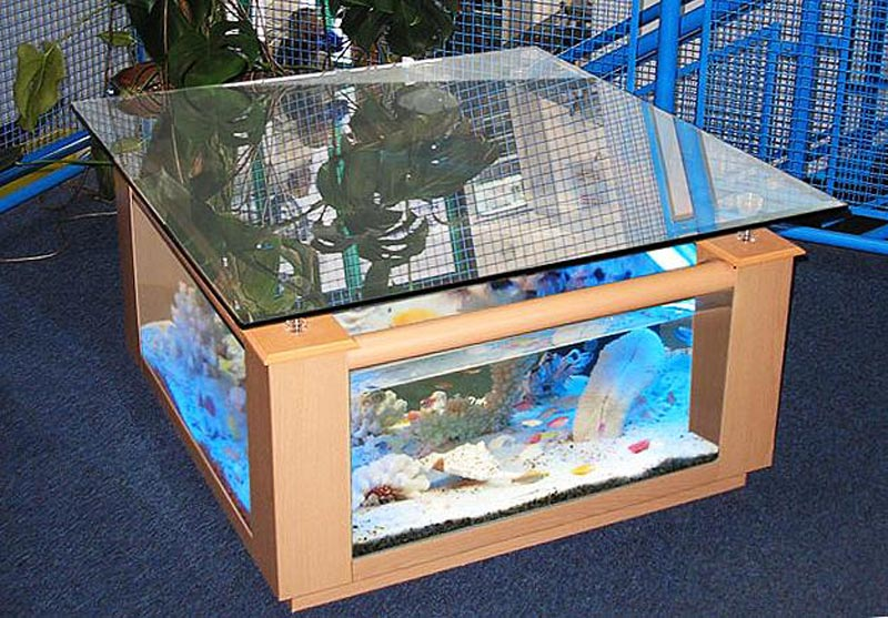 Quiet Corner Beautiful Coffee Table Aquariums Quiet Corner