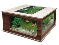 Beautiful Coffee Table Aquariums - Quiet Corner