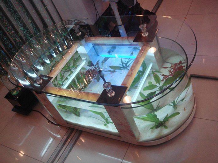 Beautiful Coffee Table Aquariums (9)