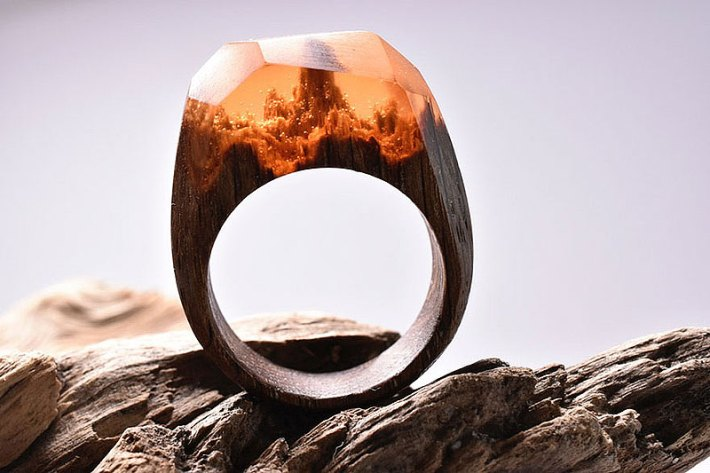 Secret Worlds Inside Wooden Rings By Secret Wood