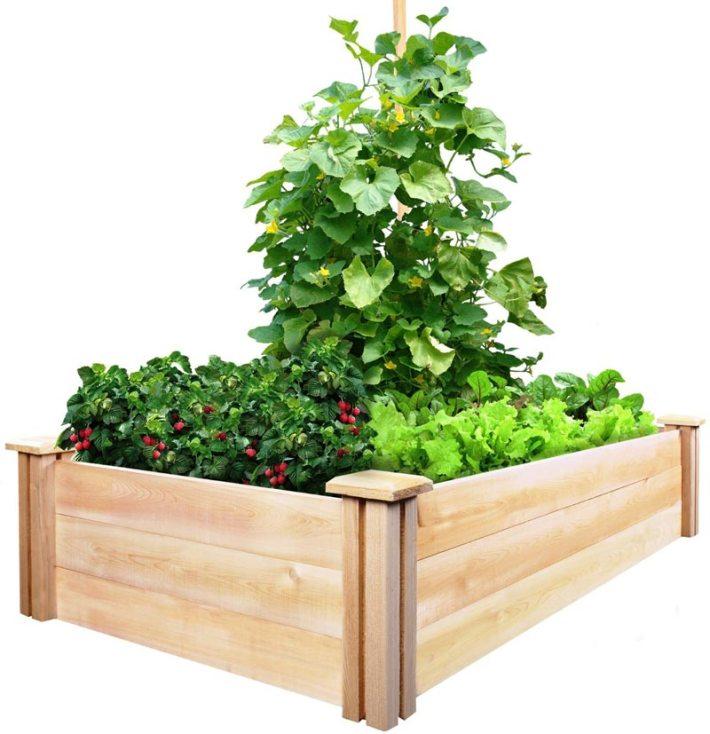 Quiet Corner:Vegetable Gardening With Raised Beds