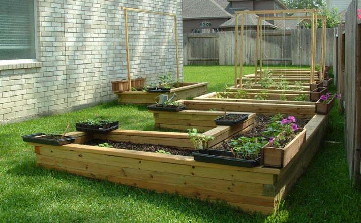 Vegetable Gardening with Raised Beds (12)