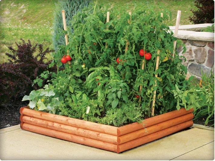 Vegetable Gardening with Raised Beds (3)