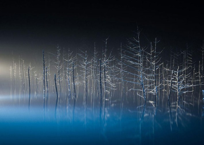 2016 National Geographic Photo Contest