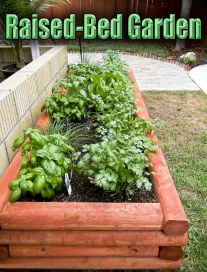 Tips for Making a Raised-Bed Garden