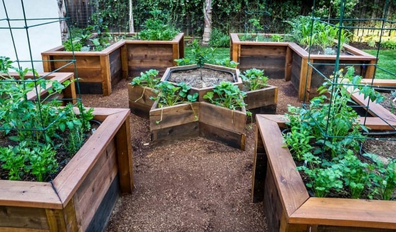 Your Build Own Raised Bed