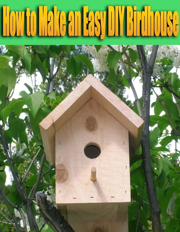 How to Make an Easy DIY Birdhouse