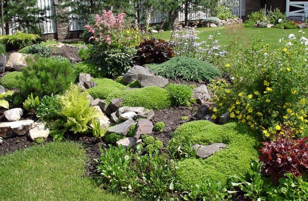 stunning rock garden design ideas