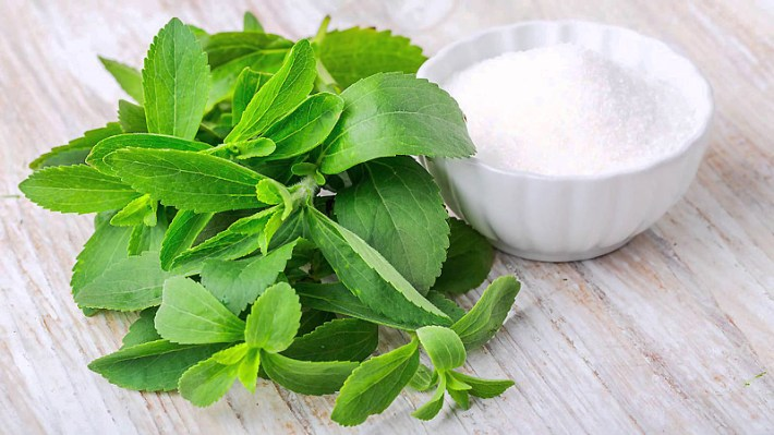Most Under-Rated Healing Herbs