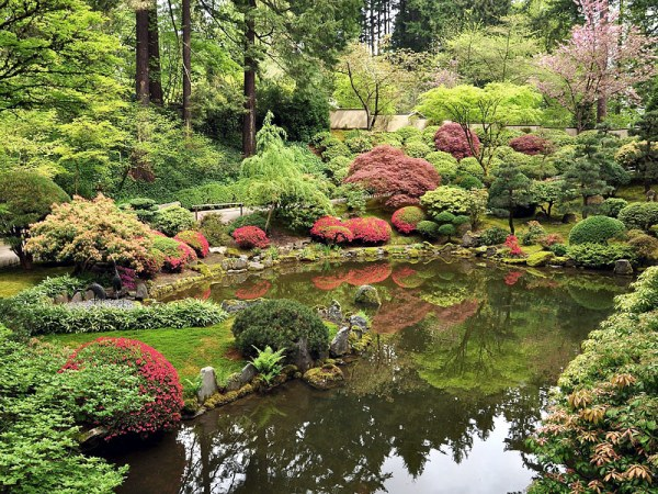choosing perfect landscaping plants