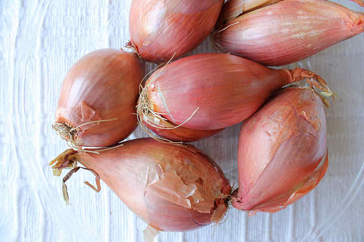 Shallots - Growing Guide - Quiet Corner