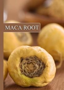 Ineradicable Health Benefits of Maca Root