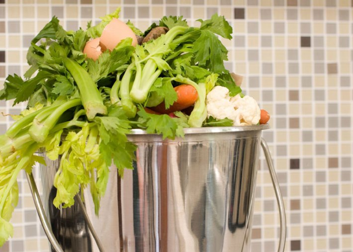 How to Grow a Vegetable Garden from Food Scraps