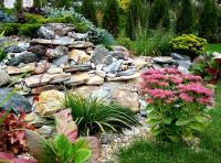 Build a Rock Garden - Quiet Corner
