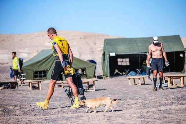 Runner Wants To Adopt Stray Dog Who Ran Through The Gobi Desert With Him