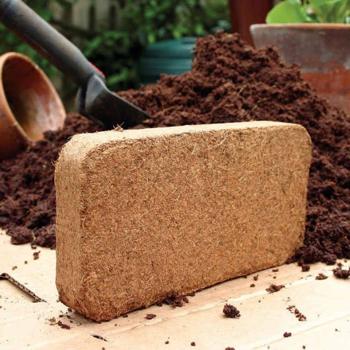 What is Coir and How to Use It in the Garden