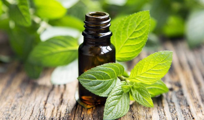 Top 10 Essential Oils and Their Health Benefits