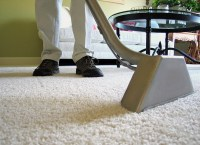 Carpet Cleaning: Steam Clean Your Carpet Naturally - Quiet ...