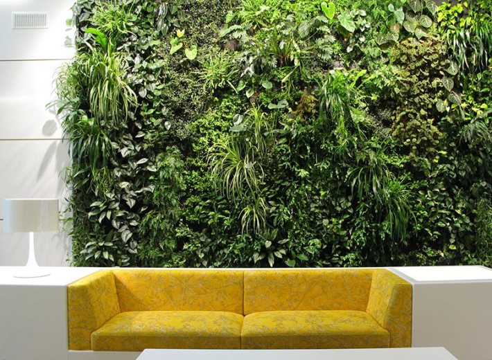 Living Wall Vertical Garden Benefits
